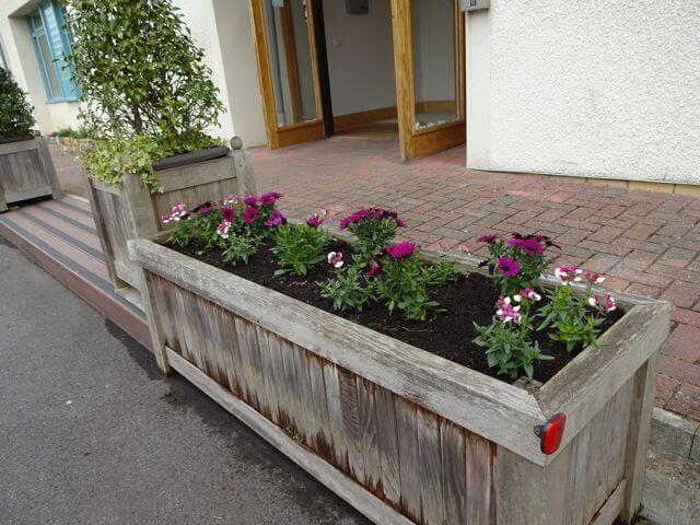Planters in car park