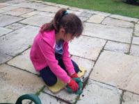 junior garden team