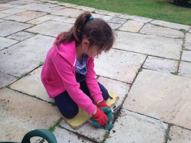 School holidays sees junior garden team on board