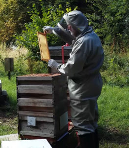 Beekeeper duties as the seasons slip by