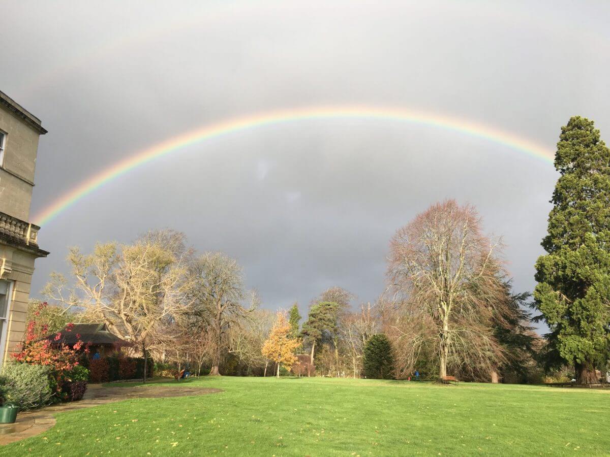 Rainbow Warriors in the garden