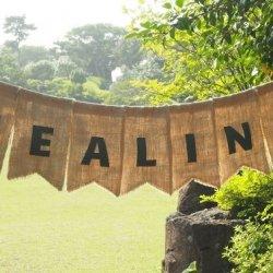 Healing Retreat