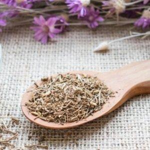 Herbs Sleep